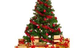 Czytaj więcej o: Z okazji nadchodzących Świąt składamy serdeczne życzenia:  radosnych, pogodnych, pełnych rodzinnego ciepła Świąt Bożego Narodzenia  oraz szczęścia i sukcesów w Nowym Roku.  Dyrekcja, Grono Pedagogiczne i Pracownicy Specjalnego Ośrodka Szkolno- Wychowawczego w Jaworze