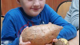 Czytaj więcej o: Święto ziemniaka w Internacie, pożegnanie lata…